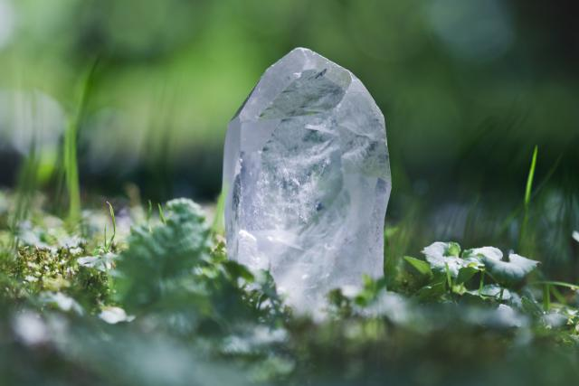 Quartz Crystal in woodland