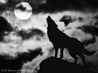 January 2nd full wolf moon