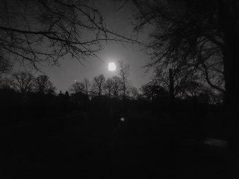 Full Lunar Eclipse Blood Blue Moon