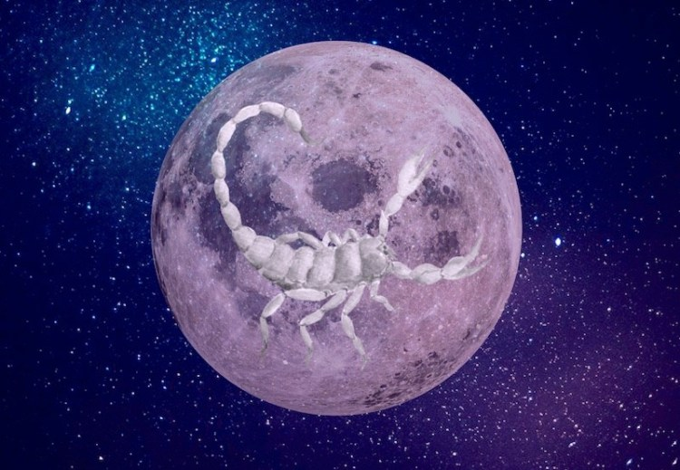 Exorcise During The Scorpio Pink Full Moon